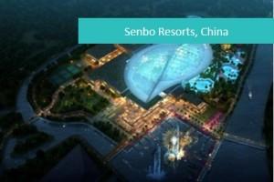 Senbo1